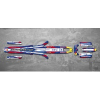 Kit adhesivos gas gas pro 02-08 red bull